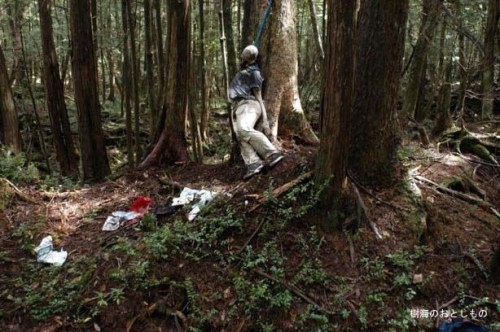 Aokigahara-forest-of-suicides-015